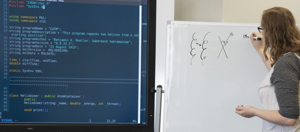 Graduate student at a white board teaching coding