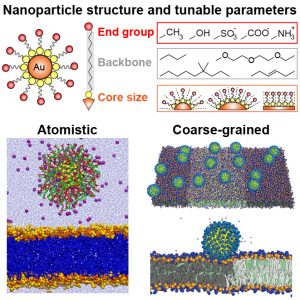 Multiscale Modeling of Nanoparticle Interactions with Lipid Bilayers
