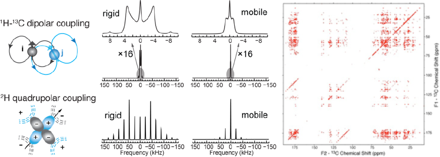 Technology figure 3: Sample preparation and isotopic labeling.